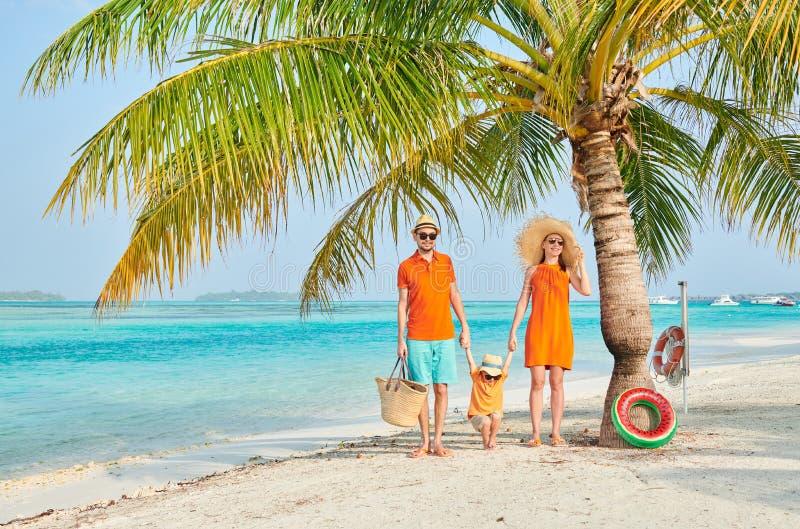 Familj av tre p? stranden under palmtr?det arkivbilder