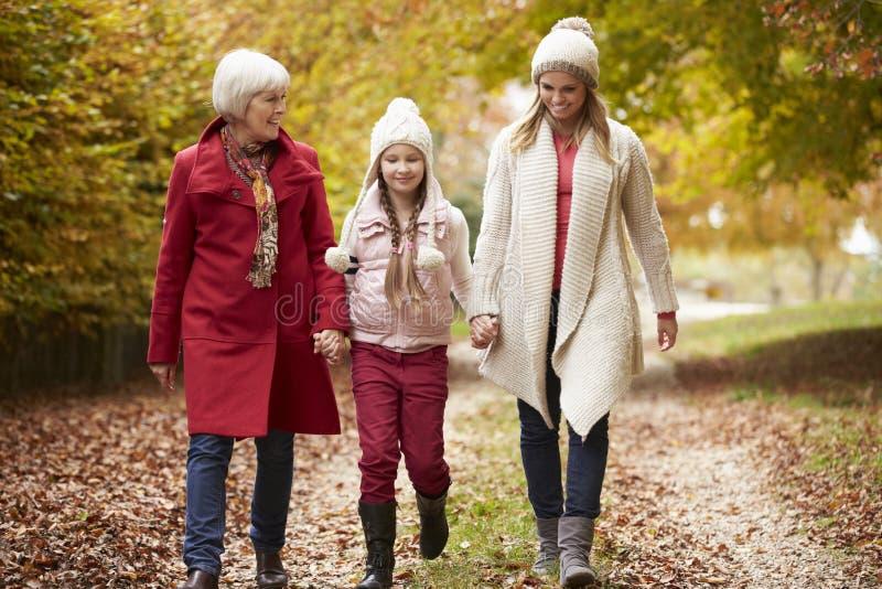 Familj för kvinnligMultl utveckling som promenerar Autumn Path arkivbilder
