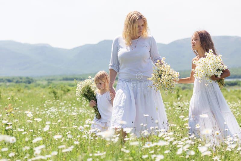 Familj i blommafält arkivfoton