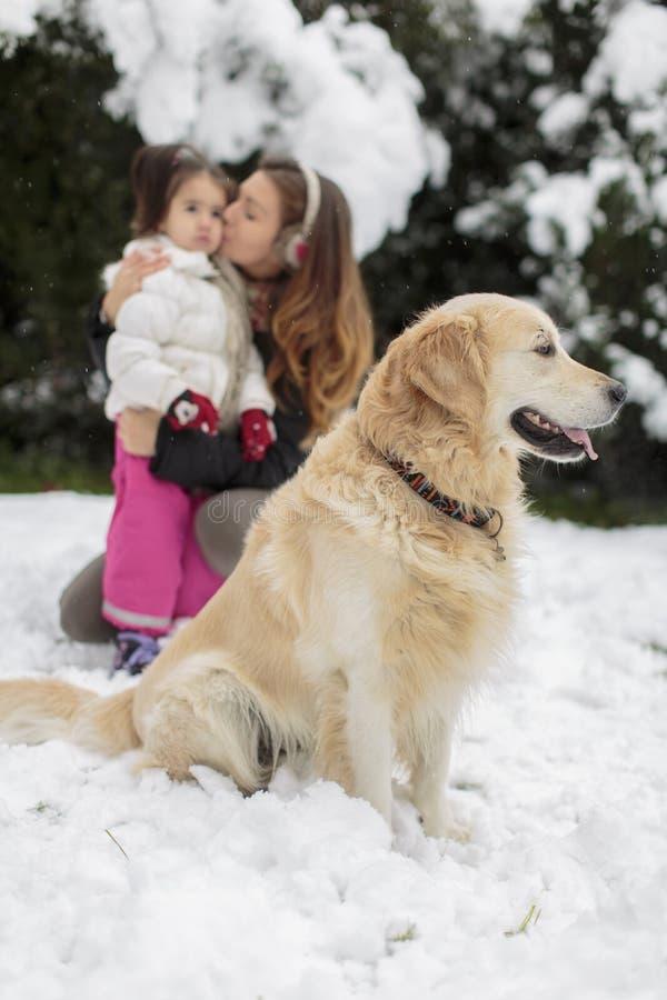 Familj med en hund på vintern arkivbilder