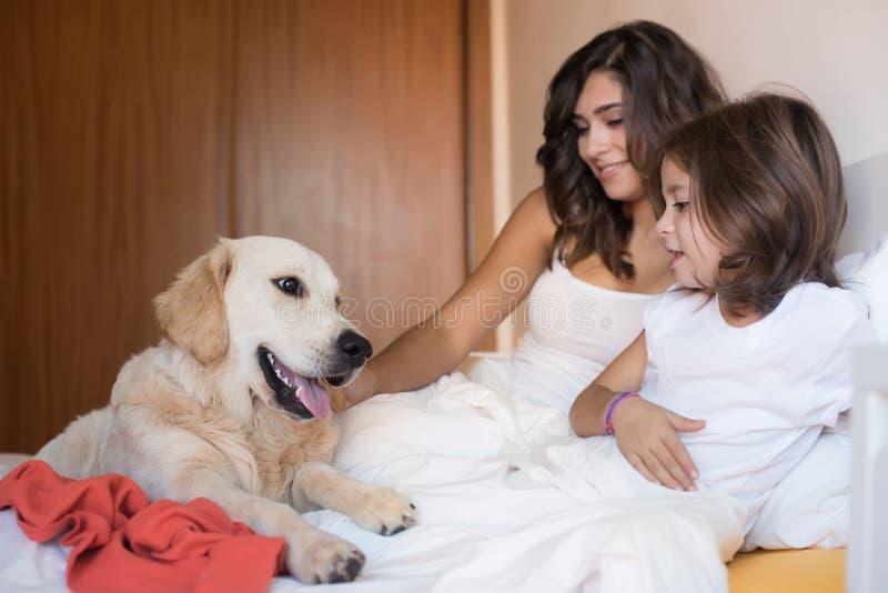 Familj med hunden i sängen royaltyfria foton