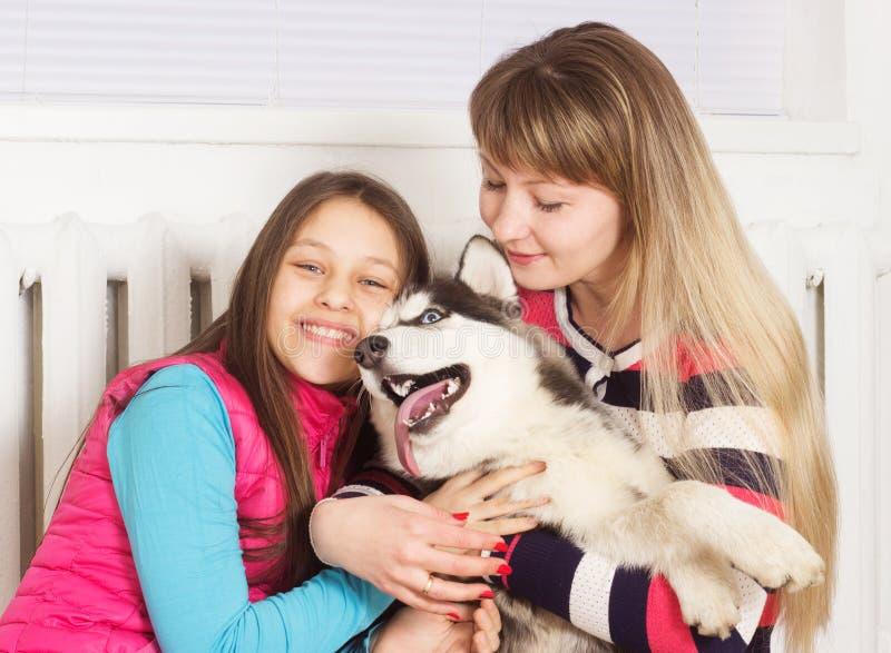 Familj och Siberian skrovlig hund arkivbilder
