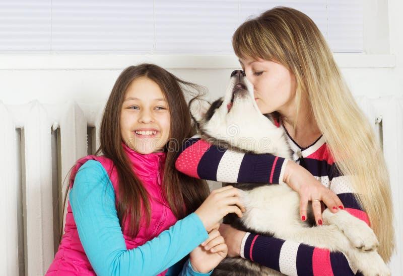 Familj och Siberian skrovlig hund arkivbild