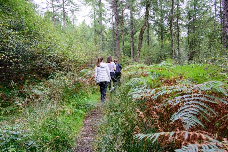Familj som fotvandrar nära Loch Lomond, Skottland royaltyfri fotografi