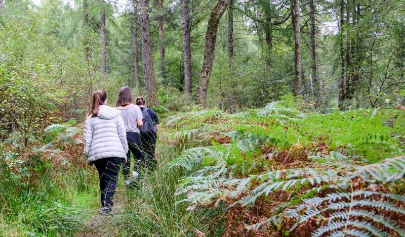 Familj som fotvandrar nära Loch Lomond, Skottland arkivbilder
