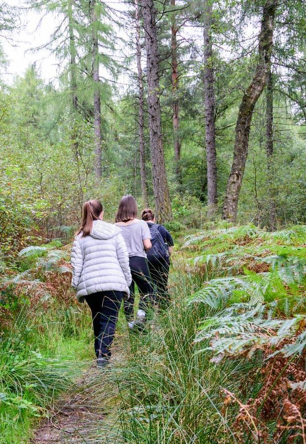 Familj som fotvandrar nära Loch Lomond, Skottland royaltyfria foton