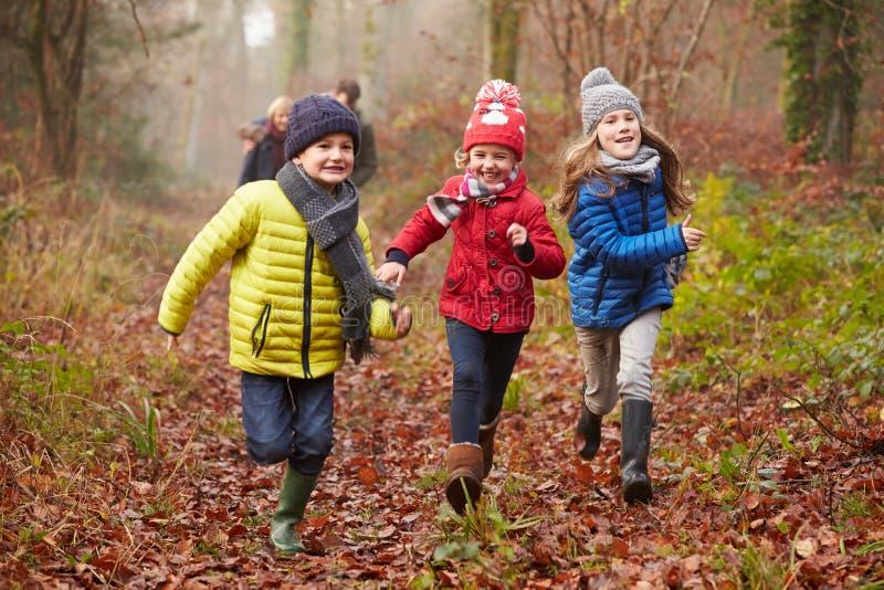 Familj som går till och med vinterskogsmark royaltyfri foto