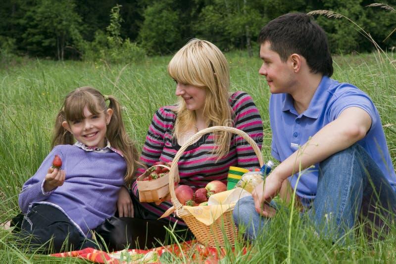 familj som har parkpicknicken royaltyfri fotografi