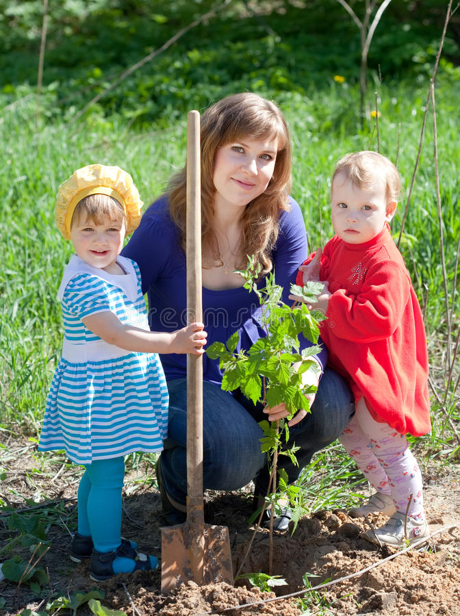 familj som planterar groddar fotografering för bildbyråer