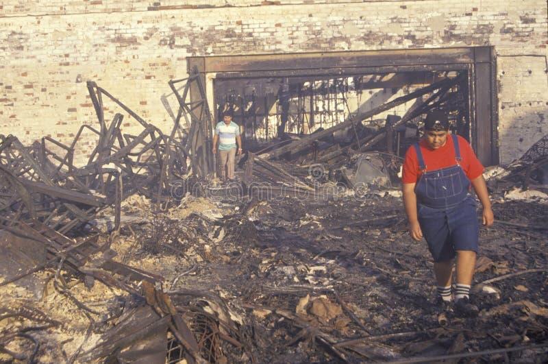 Familj som rotar till och med den brända utgångspunkten royaltyfria foton