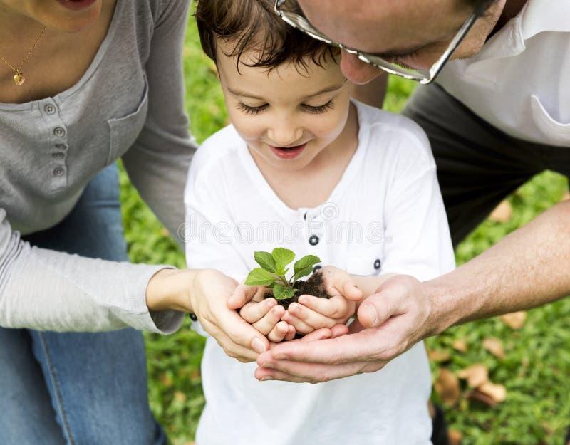 Familj som tillsammans planterar ett träd royaltyfri foto