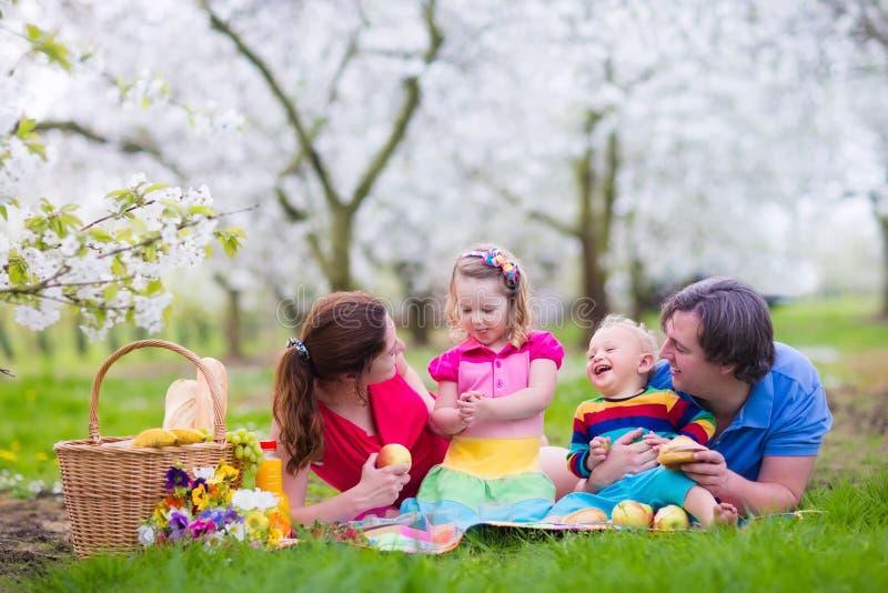 Familj som tycker om picknicken i blommande trädgård royaltyfri fotografi