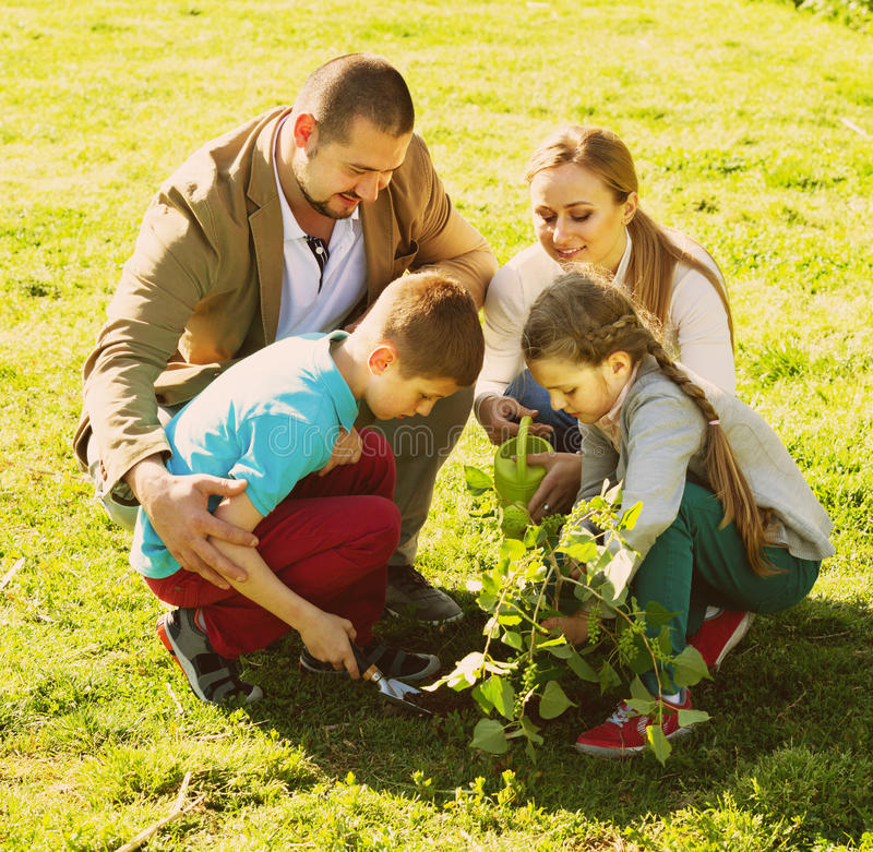 Familj som utomhus planterar trädet arkivbild