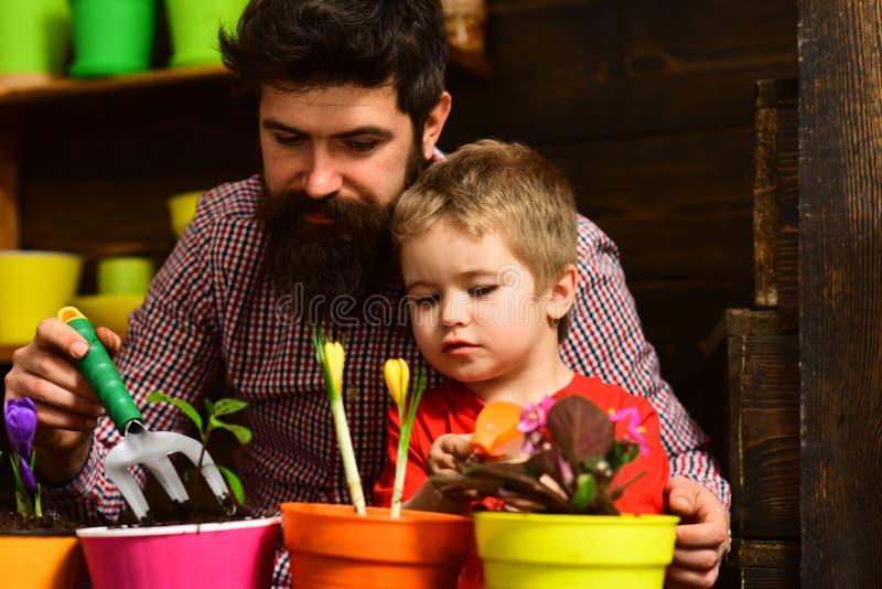 Familjdag v?xthus Fader och son Denna ?r mappen av formatet EPS10 Bevattna f?r blommaomsorg Jordg?dningsmedel lyckliga tr?dg?rdsm royaltyfri foto