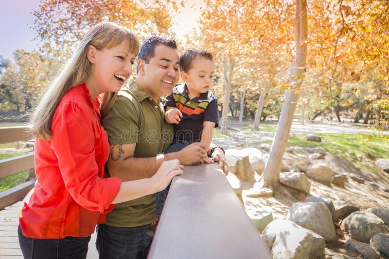 Familjen för det blandade loppet tycker om en dag på parkera arkivfoto