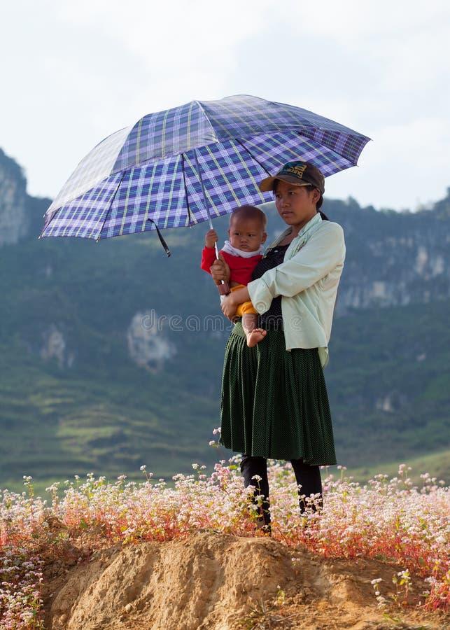 Familjen för vietnamesHmong minoritet som tar en vila på lilor, blommar fotografering för bildbyråer