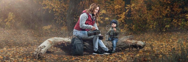 Familjen går i höstskogen arkivfoton