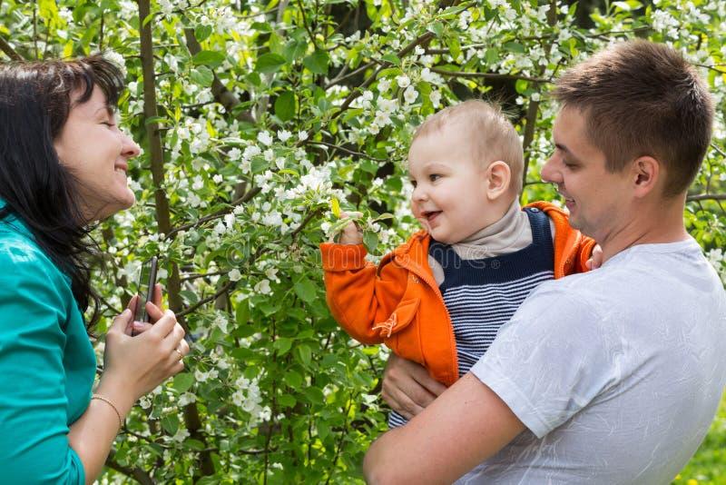 Familjen går i parkera bland träden royaltyfria foton