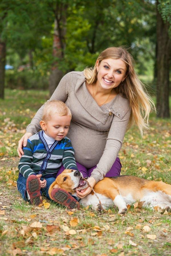 Familjen går med husdjuret i höst parkerar royaltyfri foto