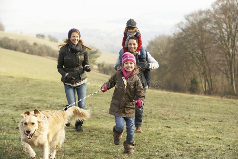 Familjen och hunden på land går i vinter fotografering för bildbyråer