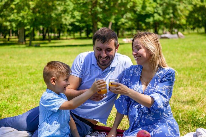 Familjen på en picknick som dricker apelsiner på grönt gräs arkivbild