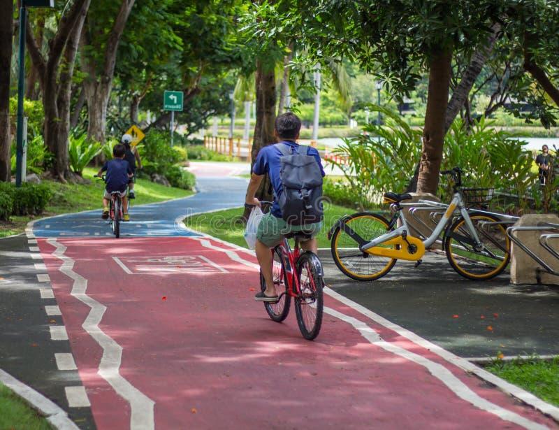Familjen som cyklar i Parket City fotografering för bildbyråer