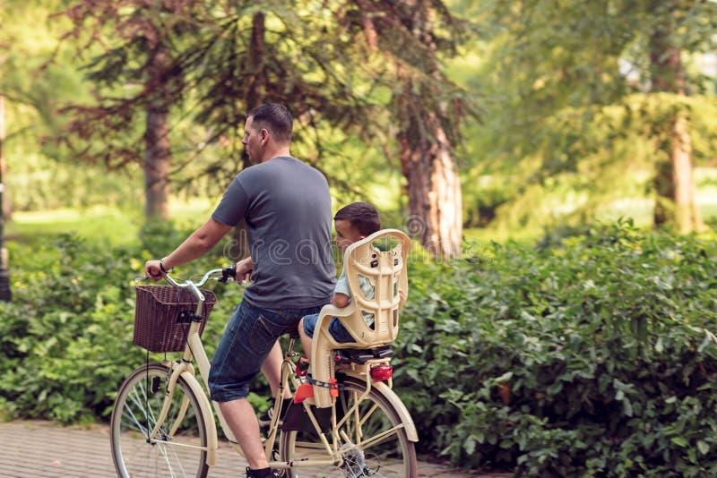 Familjen som utomhus cyklar den —fadern och sonen på cyklar parkerar in royaltyfri foto