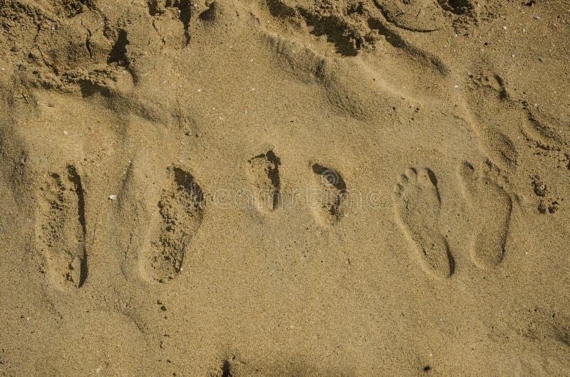 Familjfotspår i sanden fotografering för bildbyråer