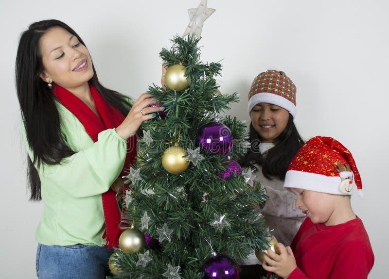 Familjframdel av att le för träd royaltyfri fotografi