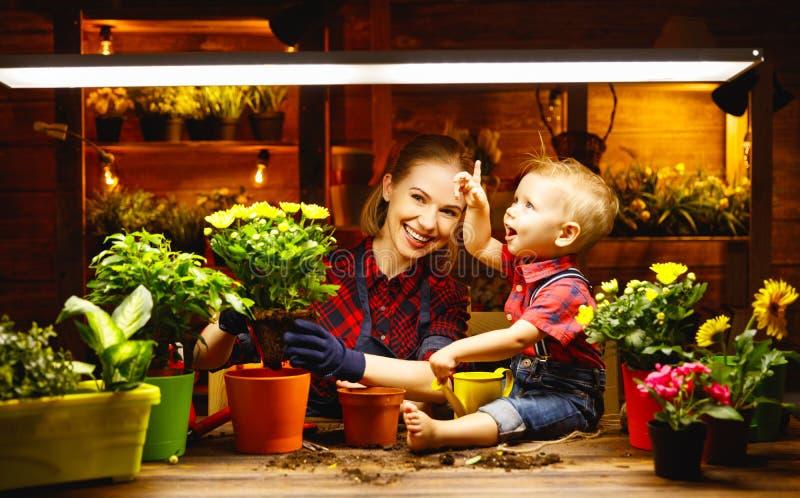 Familjmodern och behandla som ett barn växer blommor, transplantatplantor i gar arkivfoton