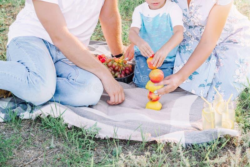 Familjpicknicken på parkerar och att bygga frukttornet royaltyfri bild