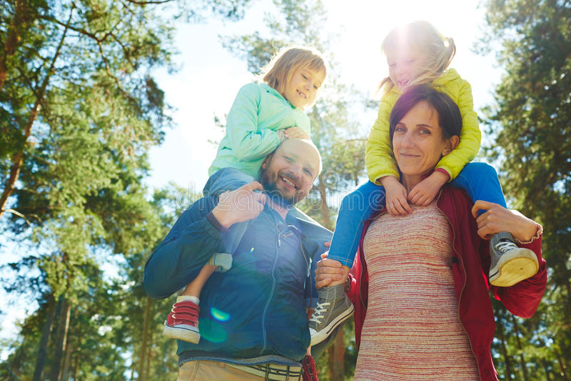 familjskogen går arkivfoton