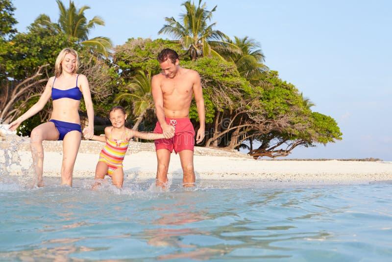 Famille éclaboussant en mer des vacances tropicales de plage photo libre de droits