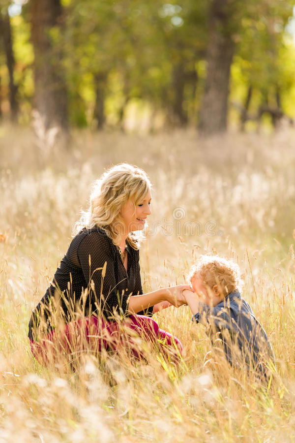 Download Famille image stock. Image du amérique, automne, caucasien - 45355449