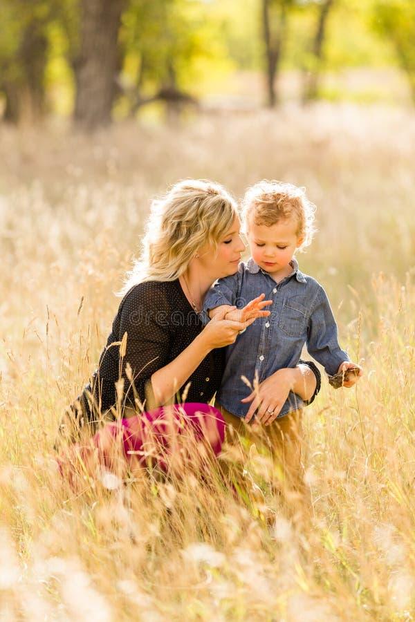 Download Famille image stock. Image du garçon, occasionnel, vieux - 45355607