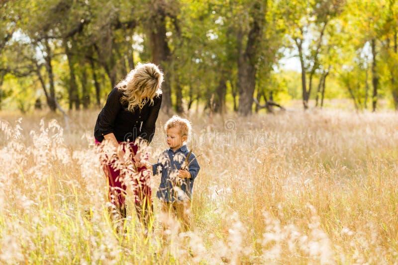 Download Famille image stock. Image du people, gosse, femmes, colorado - 45355663