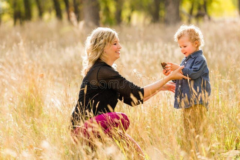 Download Famille image stock. Image du maman, enfant, amérique - 45355683