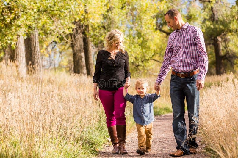 Download Famille image stock. Image du automne, états, gosse, toddler - 45355971