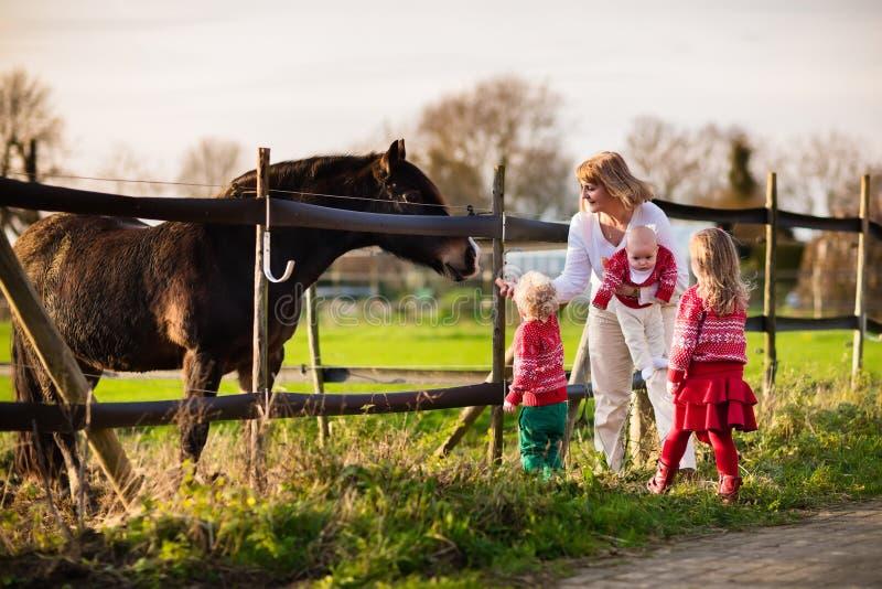 Download Famille Avec Des Enfants Alimentant Le Cheval Image stock - Image du heureux, automne: 77151709