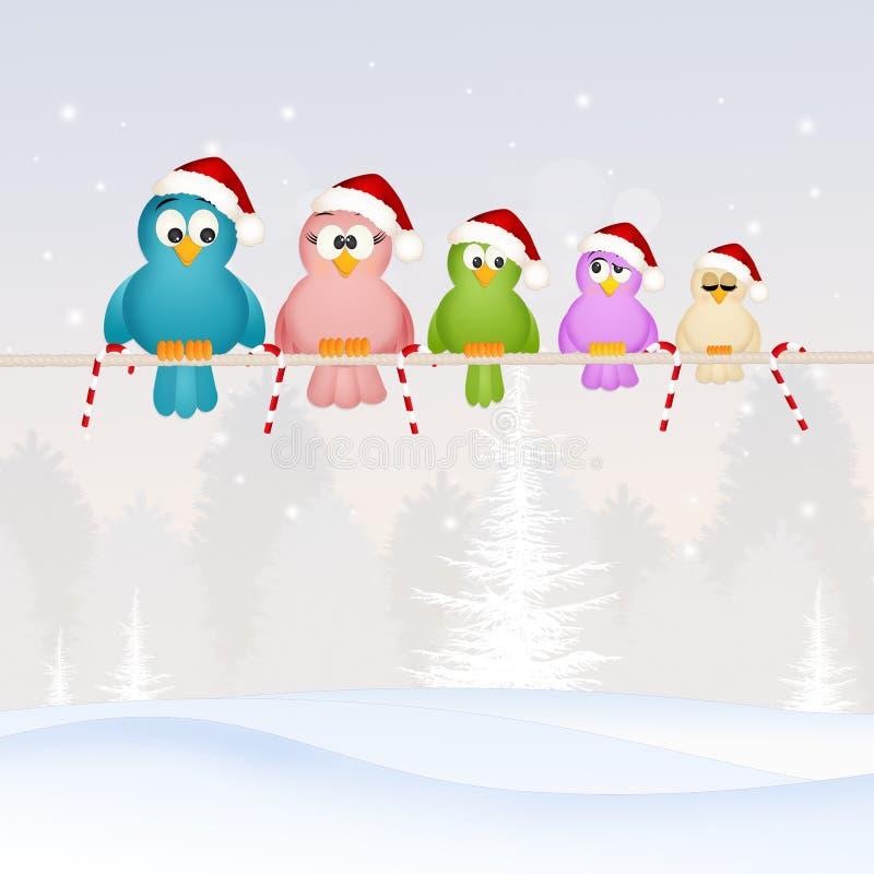 Famille d'oiseaux à Noël illustration libre de droits