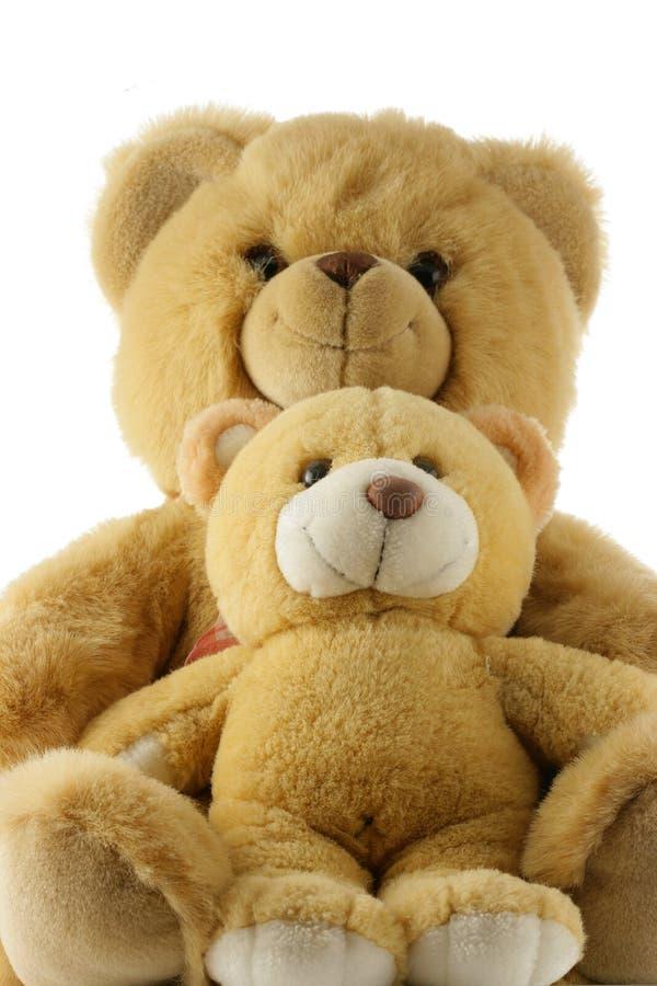 Famille d'ours de nounours image stock