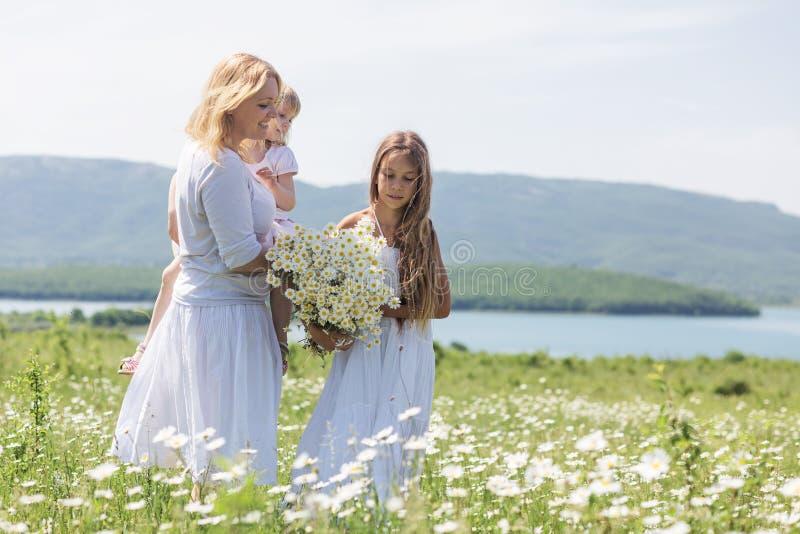Famille dans le domaine de fleur image stock