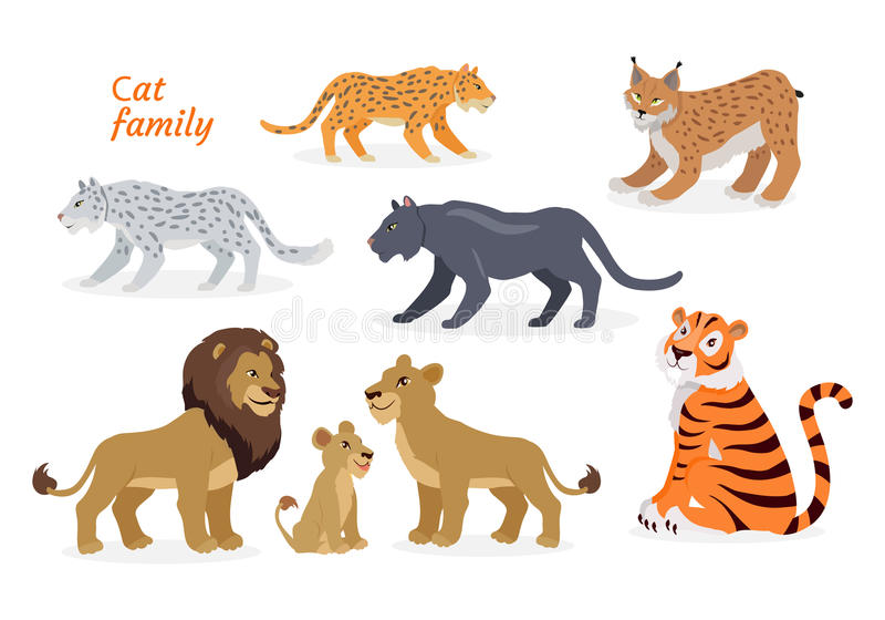 Famille de chat Felidae Pantherinae Tiger Lion Jaguar illustration libre de droits