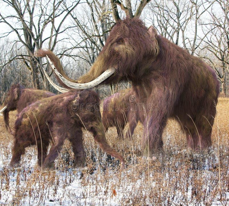Famille de mammouth laineux dans la forêt illustration de vecteur