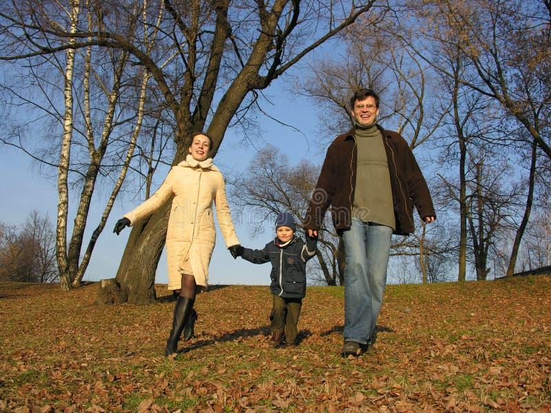 Famille de marche. bois. photo stock