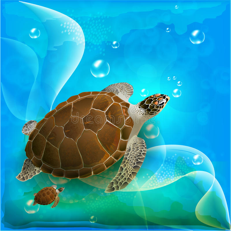 Famille de tortues illustration de vecteur