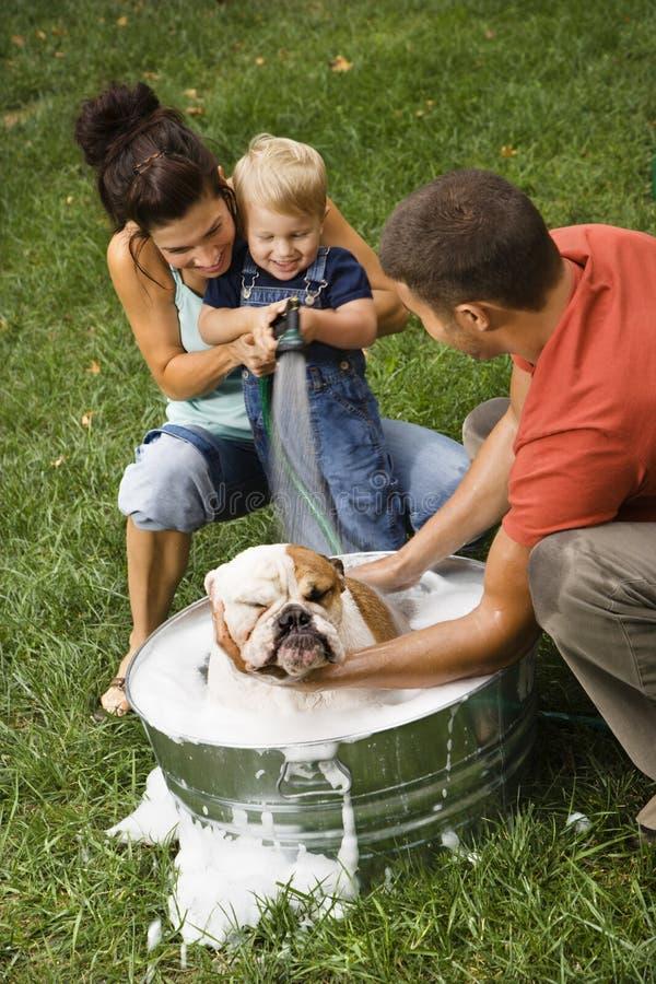 Famille donnant à crabot un bain. photographie stock