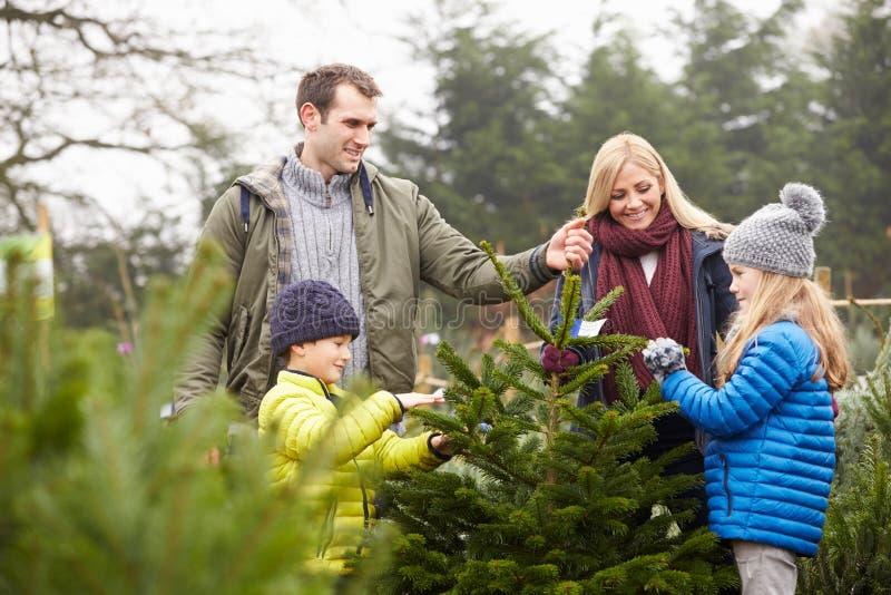 Famille extérieure choisissant l'arbre de Noël ensemble photo libre de droits