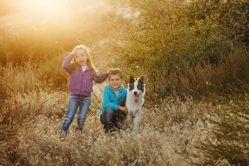 famille Frère, soeur et chien image stock