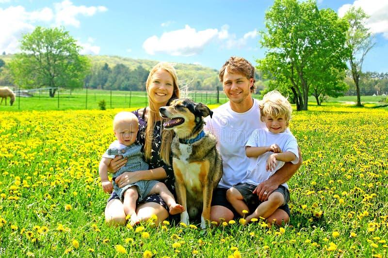 Famille heureuse s'asseyant dans le domaine de pissenlit photos libres de droits